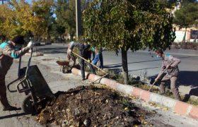 📣📣طرح پیراش و پاکسازی بستر فضاهای سبز  شهری در ایلخچی